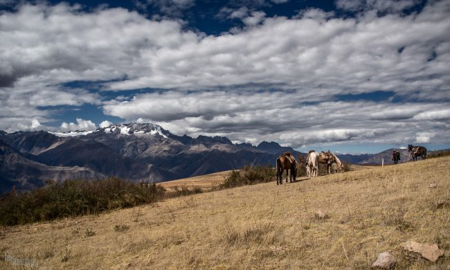 Sacred Valley, Peru (2013)