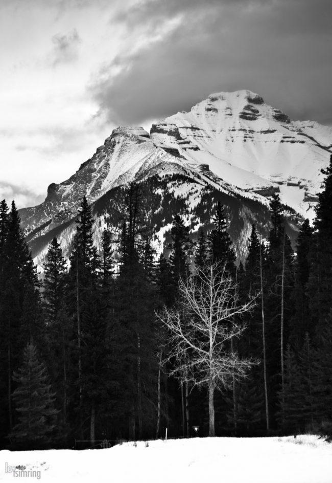 Banff, Canada (2010)