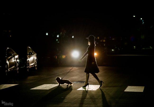 Walking the dog San Diego (2018)