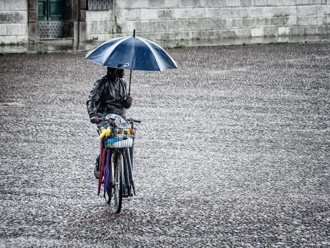 Umbrella man <p> Padua, Italy (2019))