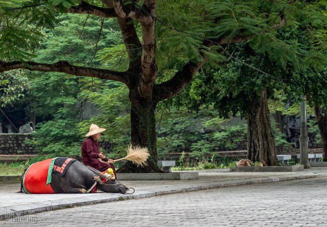 Hoa Lu, Vietnam (2015)