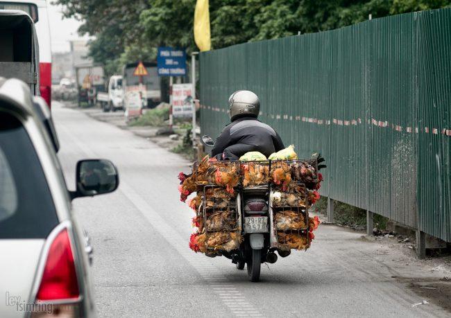 Halong bay, Vietnam (2015)