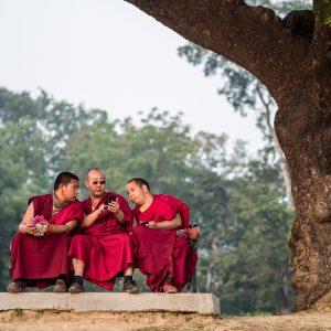 Sarnath, India (2014)