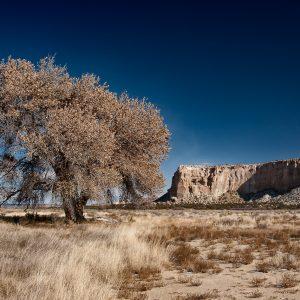 New Mexico, USA (2013)