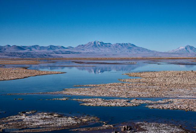 Laguna Chaxa<p> Atacama desert, Chile (2019)