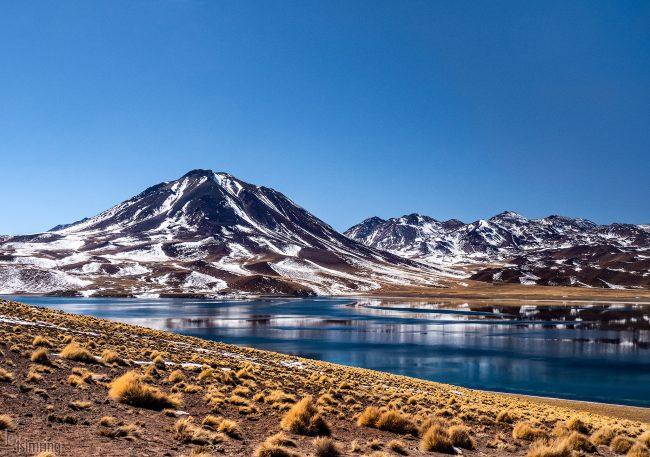 Laguna Miscanti <p> Atacama desert, Chile (2019)
