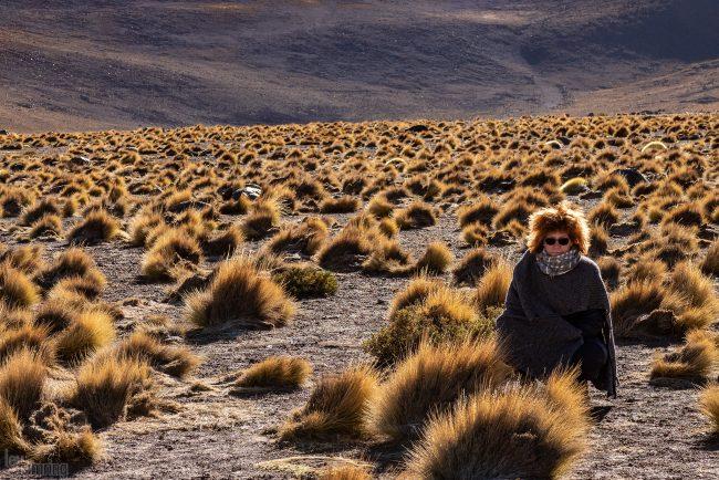 Atacama, Chile (2019)