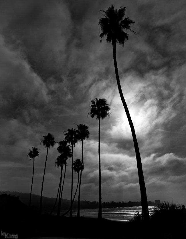 San Diego, USA (2020)