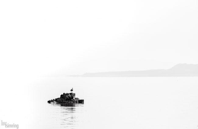Mono lake, California (2020)